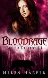 Cover_bloodrage1 (2)