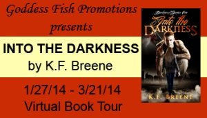 VBT Into the Darkness Banner copy (3)