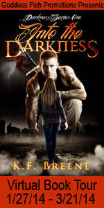 VBT Into the DarknessBook Cover Banner copy (2)