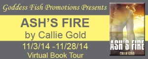 FS Ash_s Fire Tour Banner copy