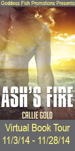 FS Ash_s Fire Tour Book Cover Banner copy
