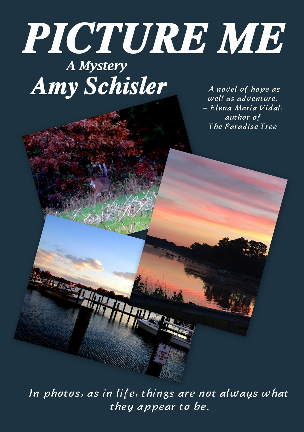 a place to call home by amy schisler reviews discussion a place called home book MediaKit_BookCover_PictureMe
