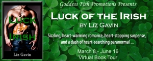 FSVBT_LuckOfTheIrish_Banner copy