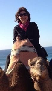 camel - Josie